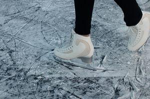 Icerink 356x235